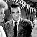 """Σινεμά με τον Φρόυντ: Προβολή της ταινίας """"Ξαφνικά Πέρσι το Καλοκαίρι"""" από την Ελληνική Ψυχαναλυτική Εταιρεία"""