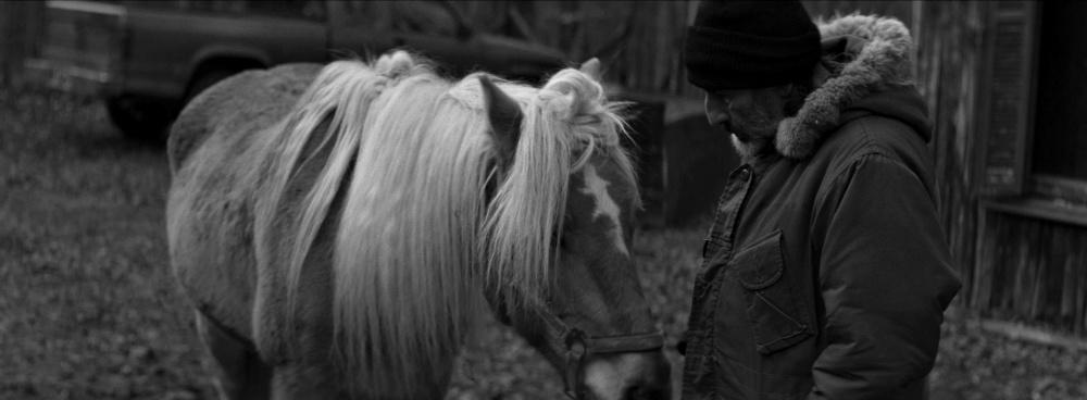 Οι ελληνικές ταινίες που θα προβληθούν στο 61ο Φεστιβάλ Κινηματογράφου Θεσσαλονίκης